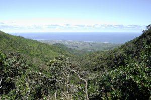 Wanderung im Nationalpark Mauritius